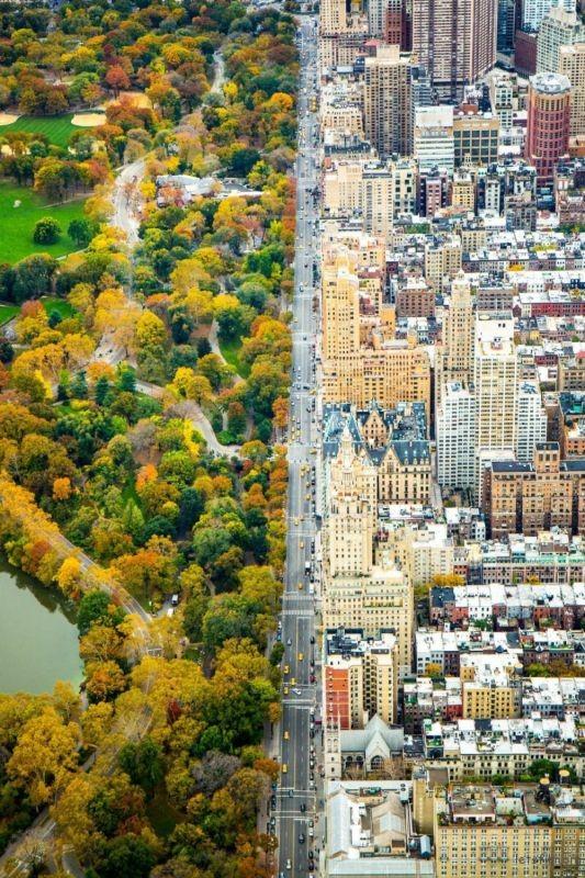 纽约中央公园两旁的截然不同的世界