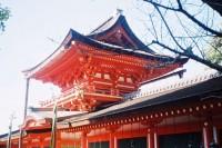 [10497] 路过日本