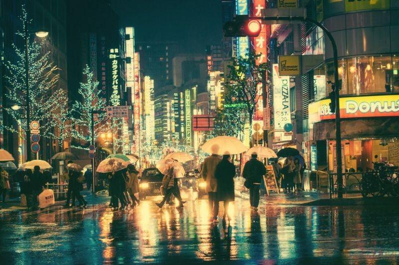作品︰untitled 摄影师︰Masashi Wakui