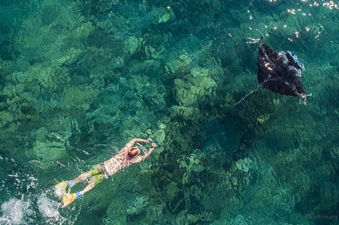 A snorkeller follows a Manta Ray, Yasawa Islands, Fiji by Captain Salty