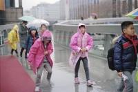 [10990] 雨天一个人走在街上,可惜孤独得不彻底