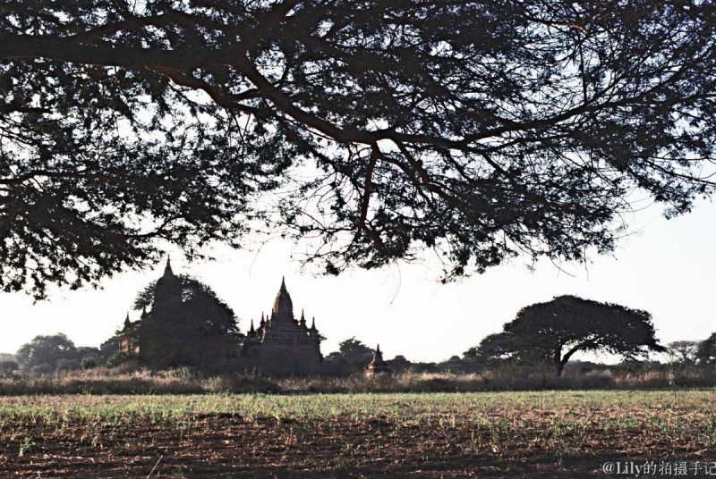 缅甸电影卷9