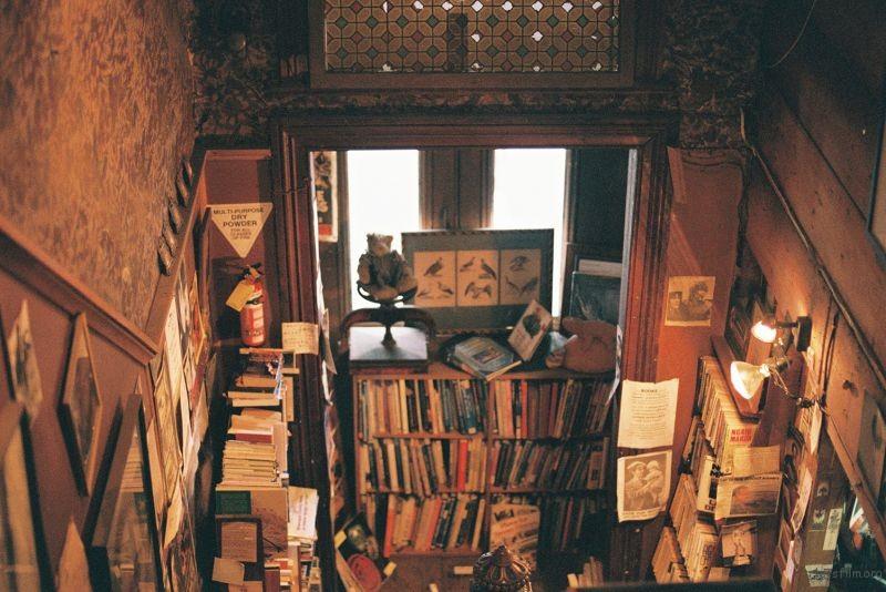 bookshop (3)
