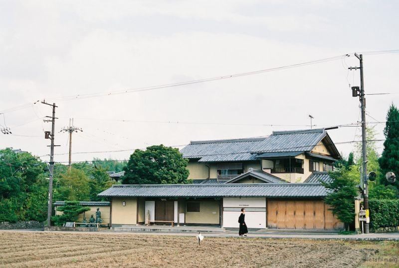 kyoto Arashiyama-16