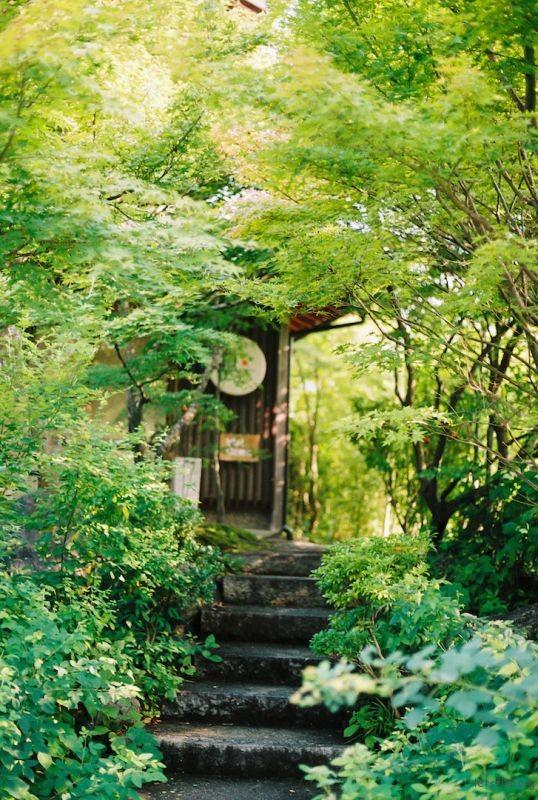 kyoto Arashiyama-21