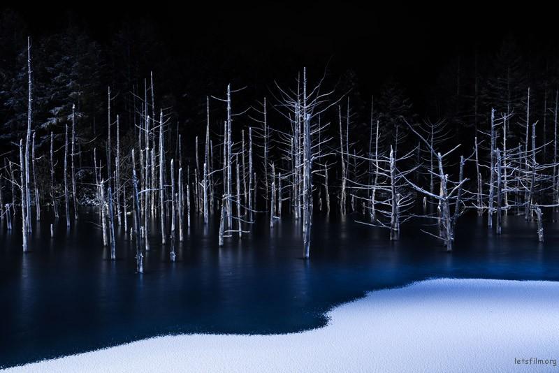 自然主题:Hiroshi Tanita,日本