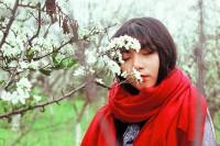 [12962] 朵朵李花再见时,莜莜苦菜物事非