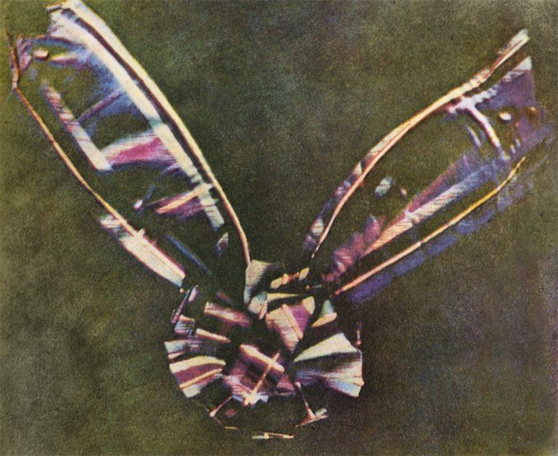 第一张使用三色法拍摄的彩照,由英格兰摄影师托马斯·萨顿拍摄于1861年