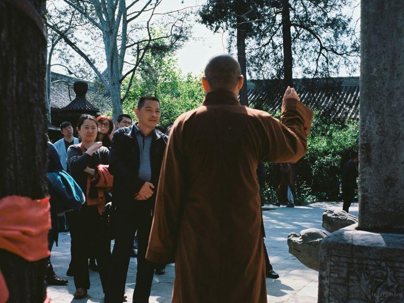 四月|北京法源寺|海鸥4B(Ektar彩色胶片)