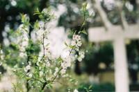 [12340] 春日碎片