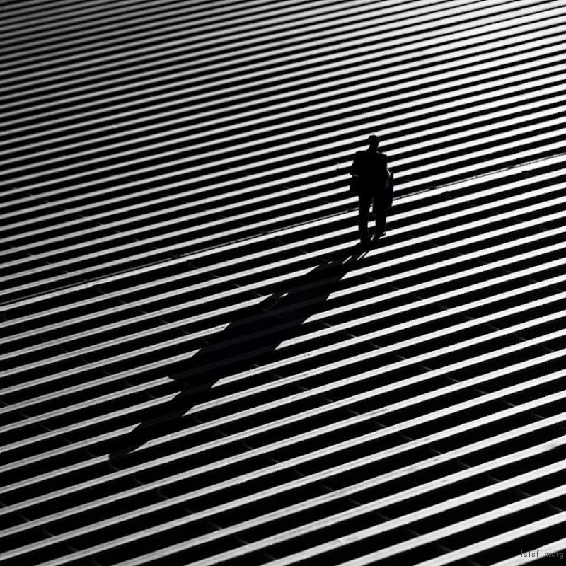 """Lines"" by Rui Veiga"