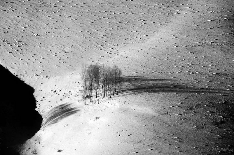 """""""Careless Whispers"""" by Ovidiu Satmari"""