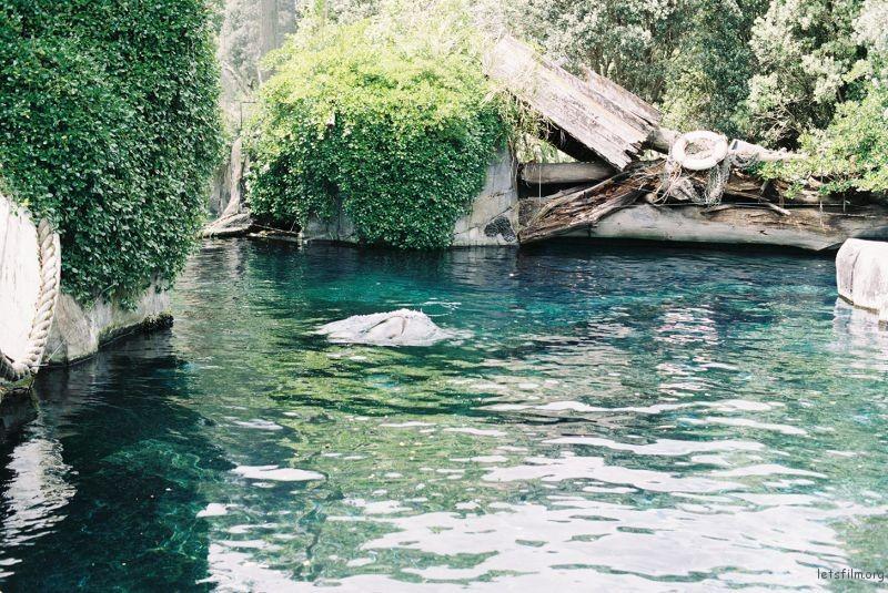 zoo (24)