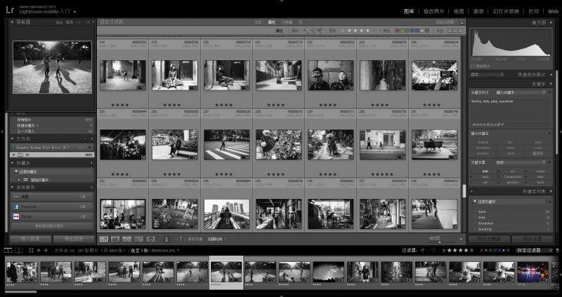 Adobe Lightroom 的图库管理界面
