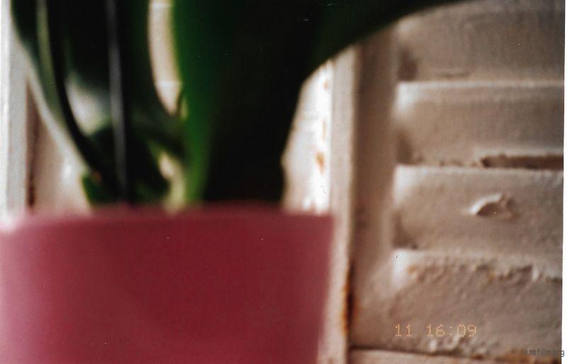 [14161] 杂碎一些 | 胶片的味道