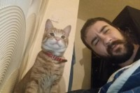 我没有养猫,但它却总是突然出现...