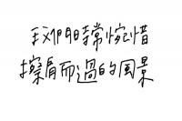 小菜乙盘短文集锦 - 关于缘分