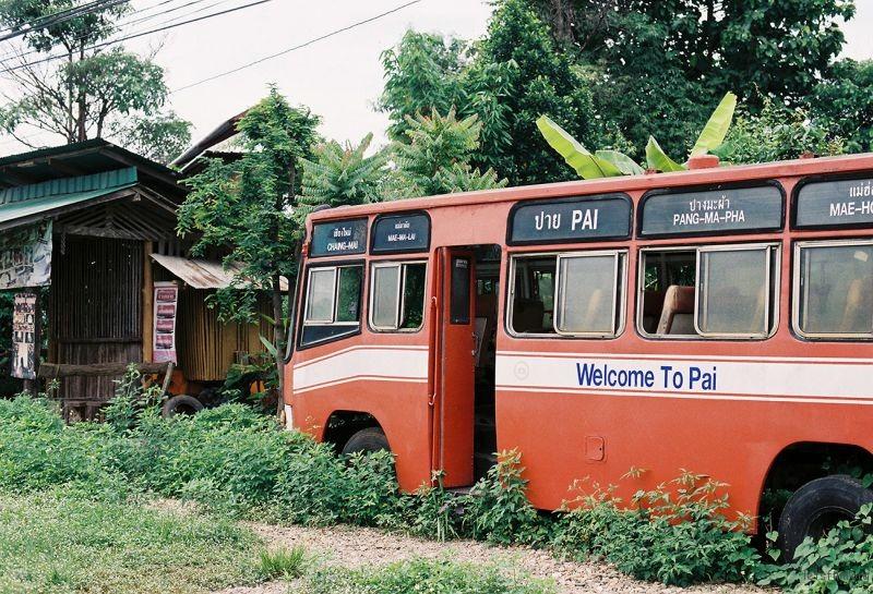 拜县上的巴士