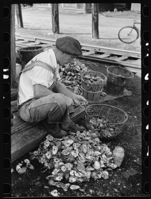 Arthur Rothstein / 1938 / Bivalve, Cumberland, New Jersey
