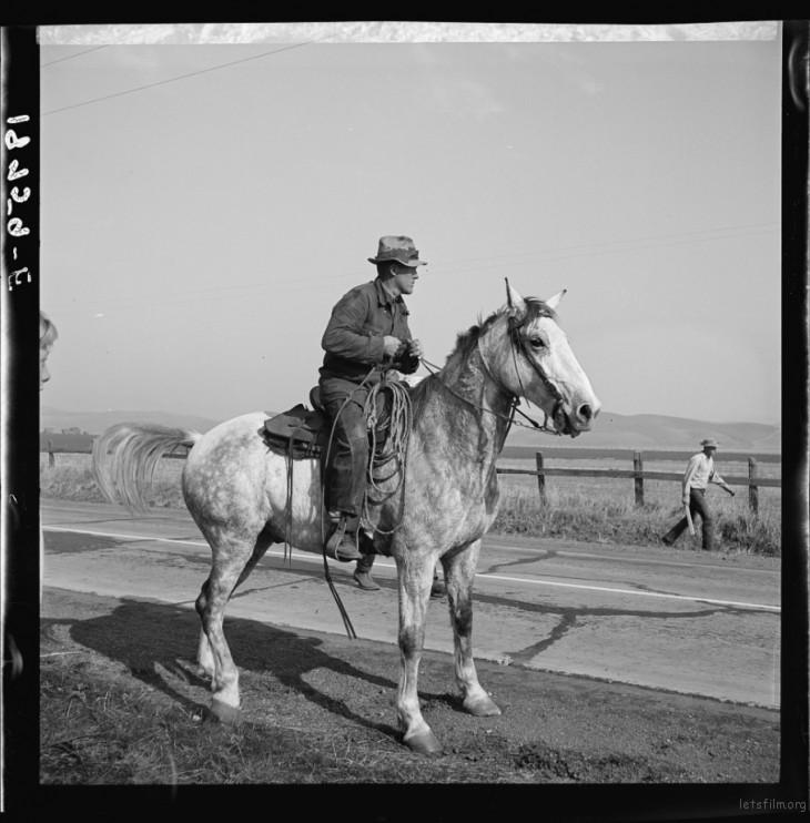 Dorothea Lange / 1938 / Contra Costa, California
