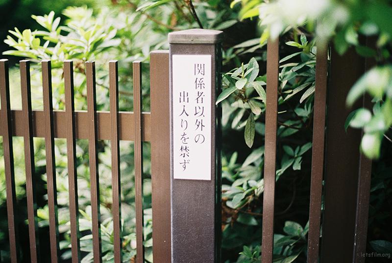 000017副本