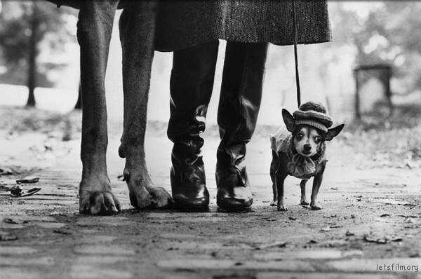 Photo by Elliot Erwitt