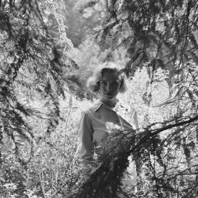 Marilyn-Monroe-rare-photos-in-the-woods-596b6fc60cb73__880