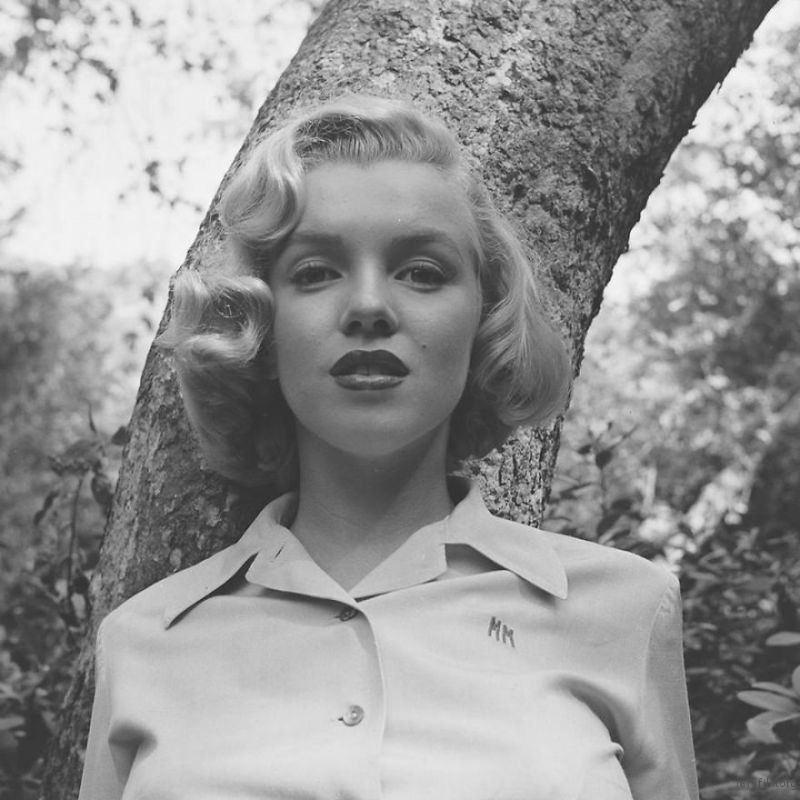 Marilyn-Monroe-rare-photos-in-the-woods-596b6fd0c02e1__880