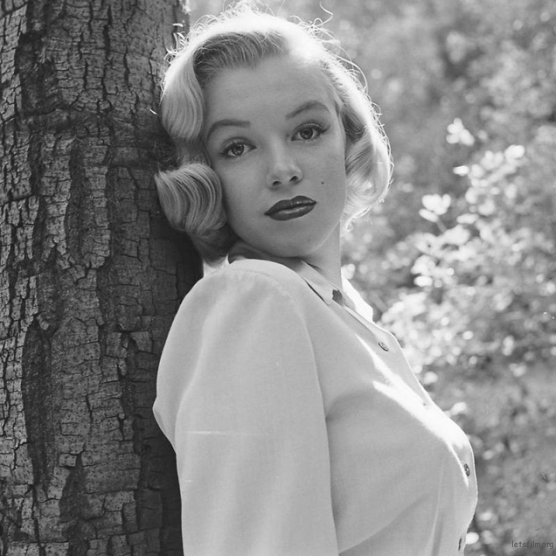 Marilyn-Monroe-rare-photos-in-the-woods-596b6ff455ade__880