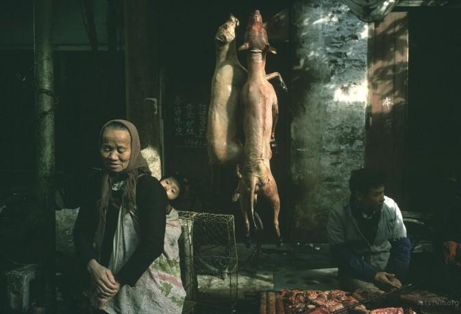 1982年,广州,菜市场内悬挂的狗肉