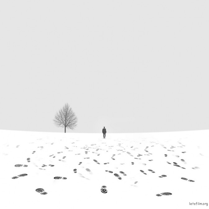 Photo by Hossein Zare