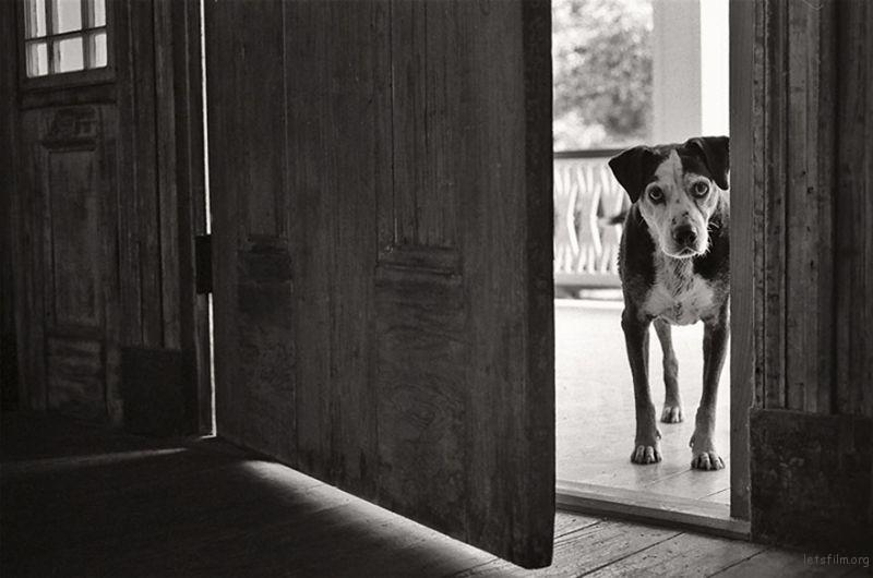 Wally, 14 Years Old, Ferrida, Louisiana
