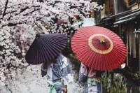 关西摄影师 Nandin Yuan 镜头下的伞