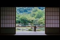 [15117] 涼しい夏の雨だ 