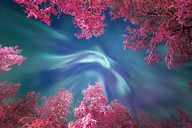 Auroral Crown © Yulia Zhulikova (Russia)