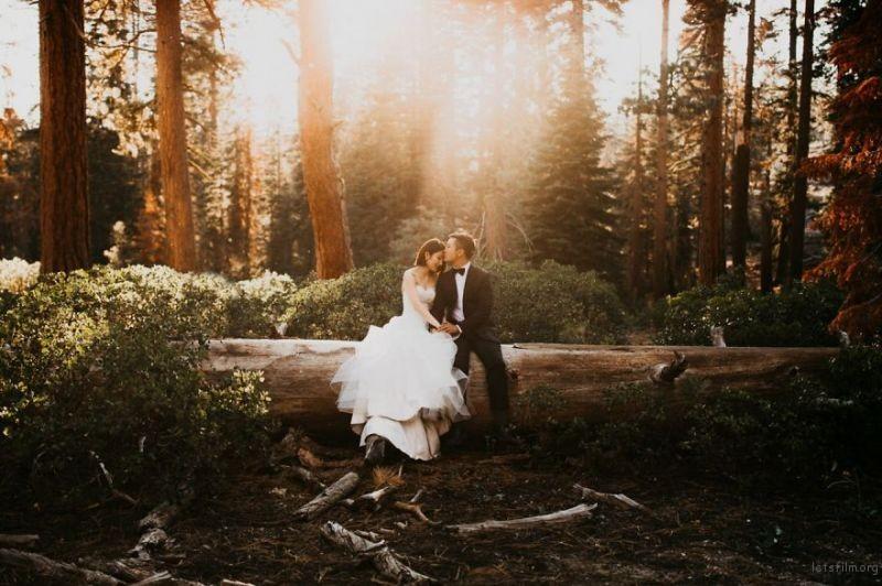 Yosemite National Park, United States by Cody & Allison Photography