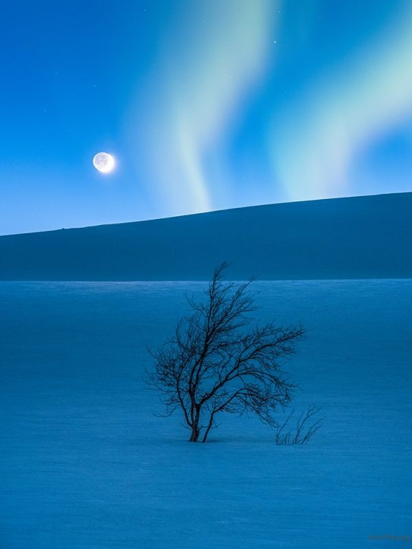 The Blue Hour © Tommy Eliassen (Norway)