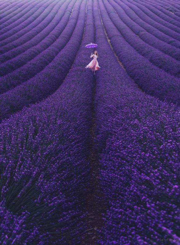 Valensole, Provence, France. Model: Svetlana