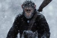 《猩球崛起》三部曲— 人类真的好讨厌呢