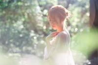 [15829] 阳光下的森林
