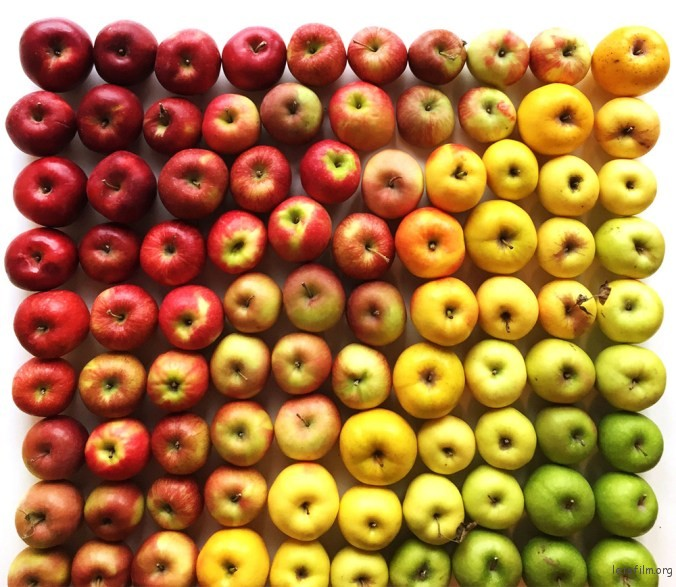 Brittany-Wright-Foods-Colorful-Gradients-3