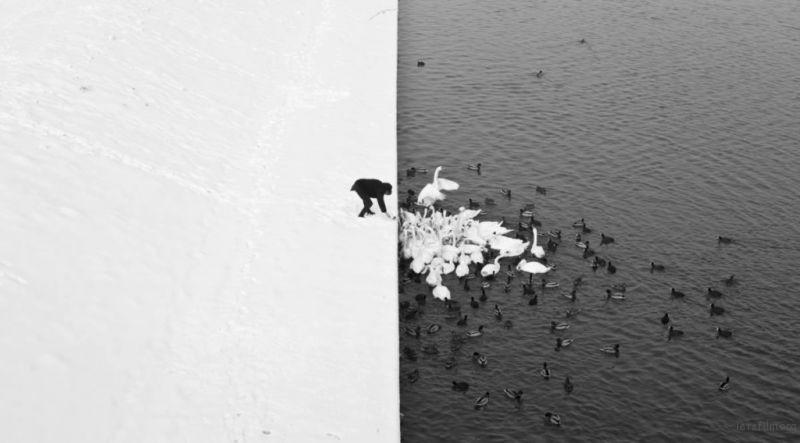Photo by Marcin Ryczek