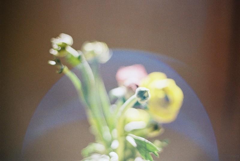 与光为舞06