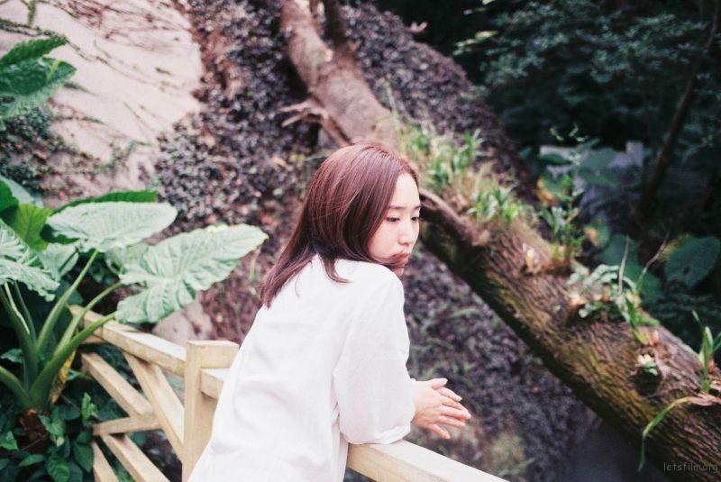 植物园 (6)
