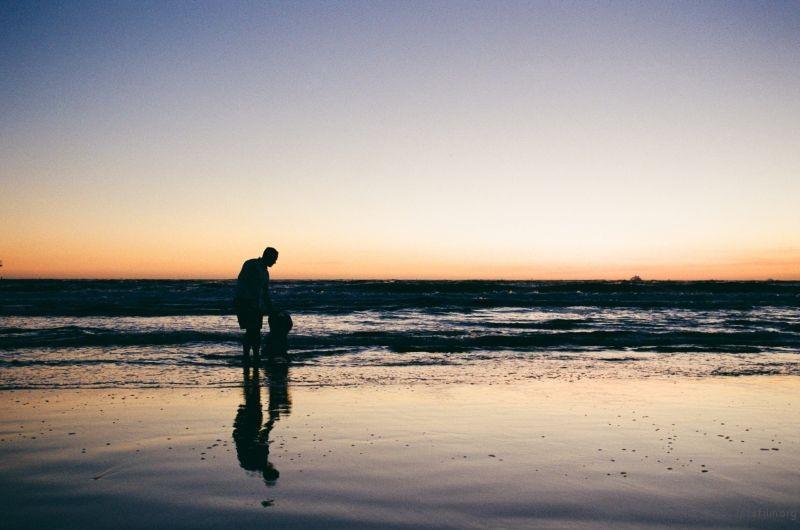 海边的父子