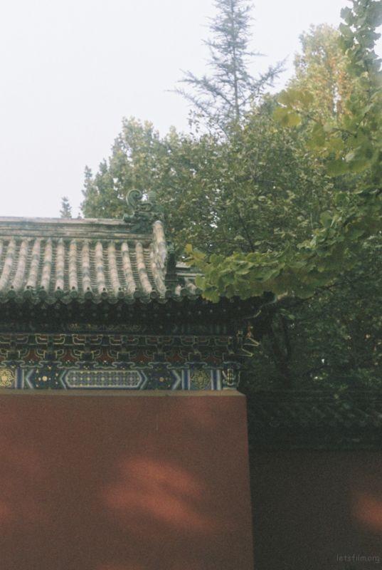 北京深秋的记忆(6)
