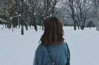 [16770] 你说想看北海道的雪