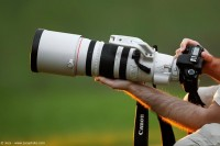 不同焦段都有什么特点,你到底需要一支什么镜头?