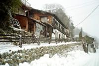 [17383] 大雪的奈良井宿