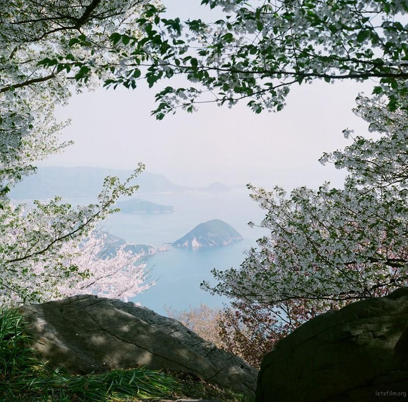未标题-13_副本